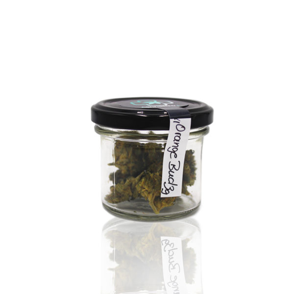 CannaMEDPlus Orange Bud - CBD max. 6% THC 0,2%-01